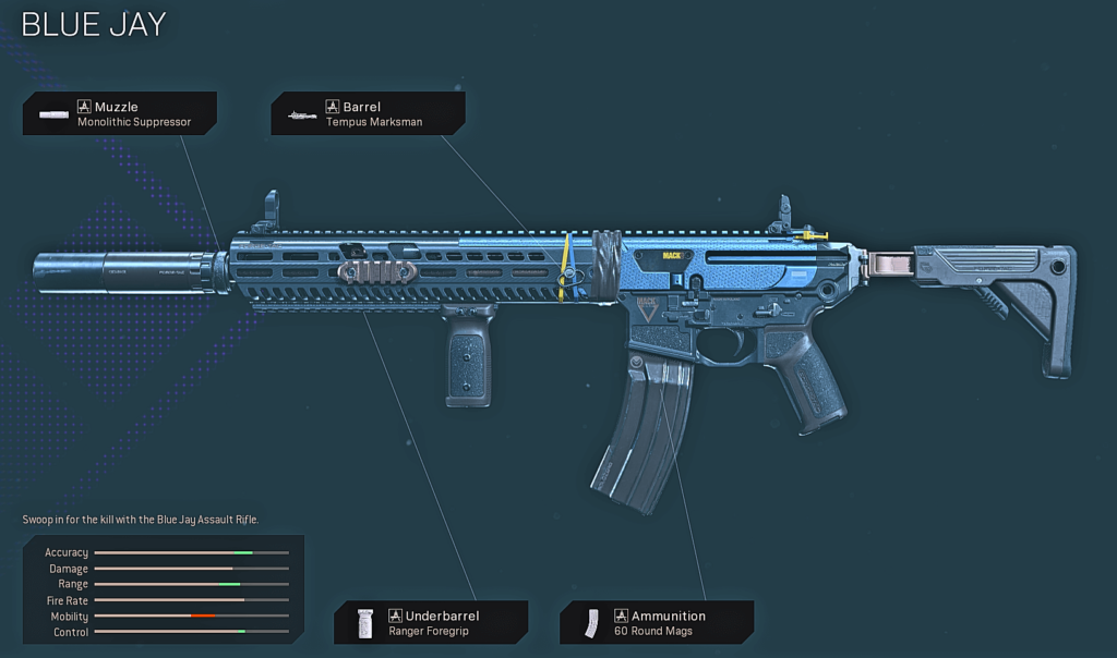 Top 10 Best M13 Blueprints in Warzone - Blue Jay
